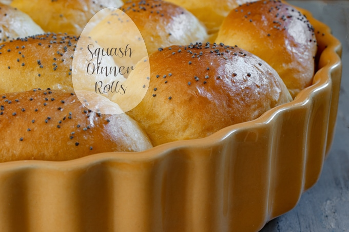 Squash Dinner Rolls – Revisited
